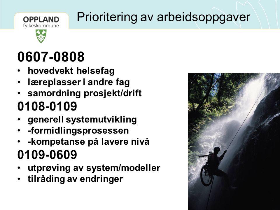 Prioritering av arbeidsoppgaver 0607-0808 hovedvekt helsefag læreplasser i andre fag samordning prosjekt/drift 0108-0109 generell systemutvikling -for