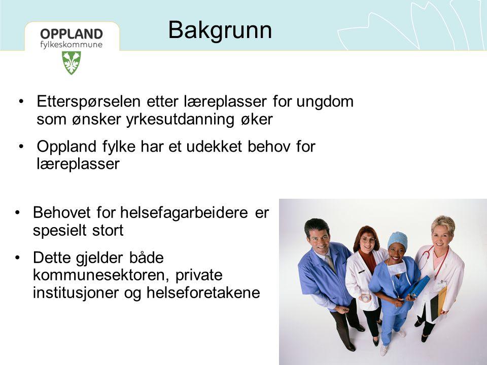 Bakgrunn Etterspørselen etter læreplasser for ungdom som ønsker yrkesutdanning øker Oppland fylke har et udekket behov for læreplasser Behovet for hel