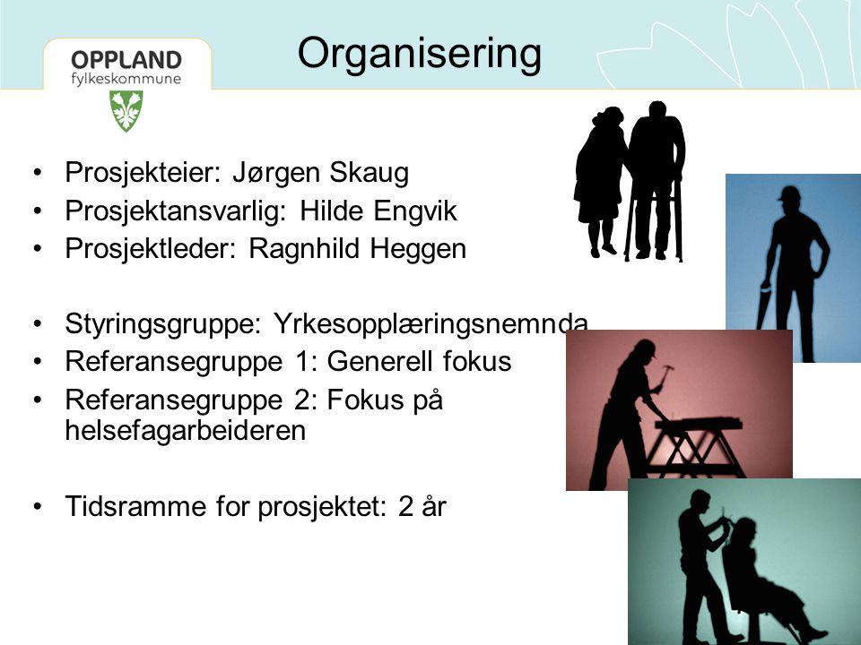 Organisering Prosjekteier: Jørgen Skaug Prosjektansvarlig: Hilde Engvik Prosjektleder: Ragnhild Heggen Styringsgruppe: Yrkesopplæringsnemnda Referanse