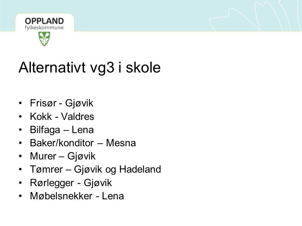Alternativt vg3 i skole Frisør - Gjøvik Kokk - Valdres Bilfaga – Lena Baker/konditor – Mesna Murer – Gjøvik Tømrer – Gjøvik og Hadeland Rørlegger - Gjøvik Møbelsnekker - Lena