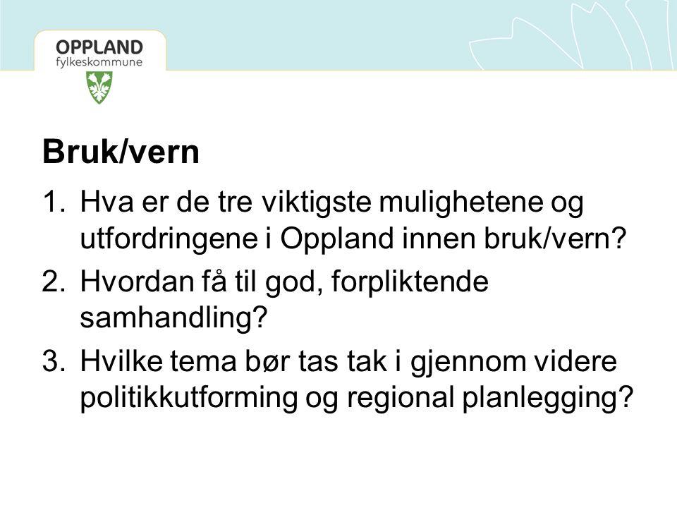 Bruk/vern 1.Hva er de tre viktigste mulighetene og utfordringene i Oppland innen bruk/vern.