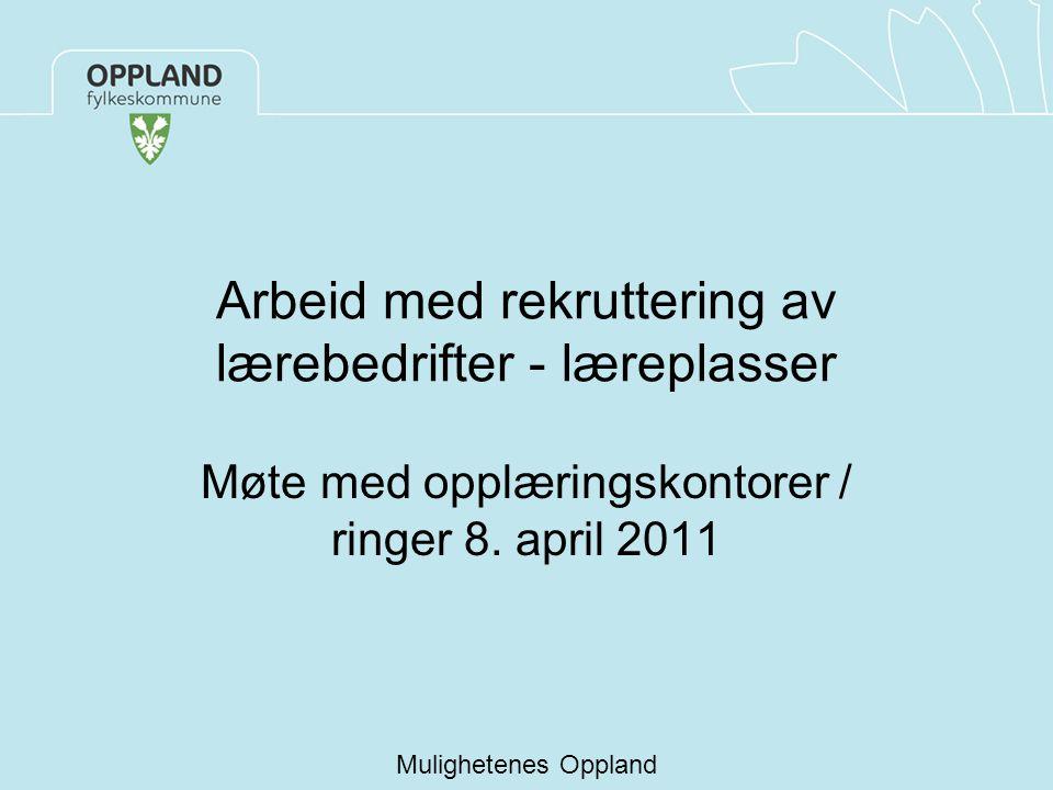Arbeid med rekruttering av lærebedrifter - læreplasser Møte med opplæringskontorer / ringer 8. april 2011 Mulighetenes Oppland