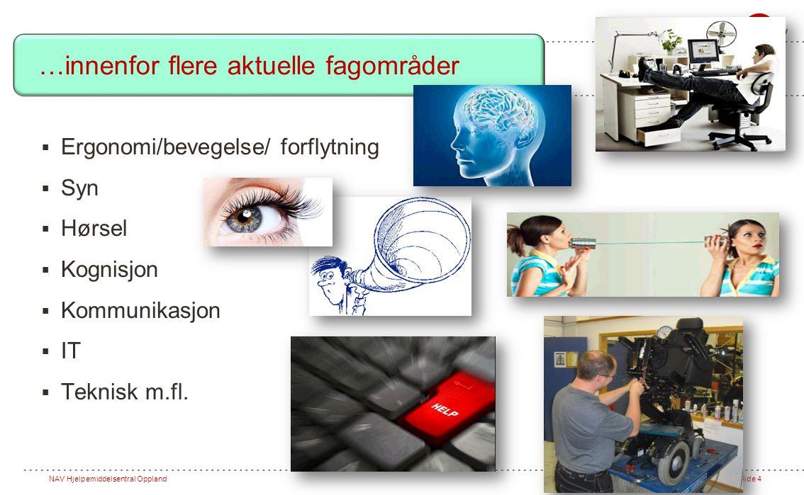 NAV Hjelpemiddelsentral OpplandSide 4  Ergonomi/bevegelse/ forflytning  Syn  Hørsel  Kognisjon  Kommunikasjon  IT  Teknisk m.fl.