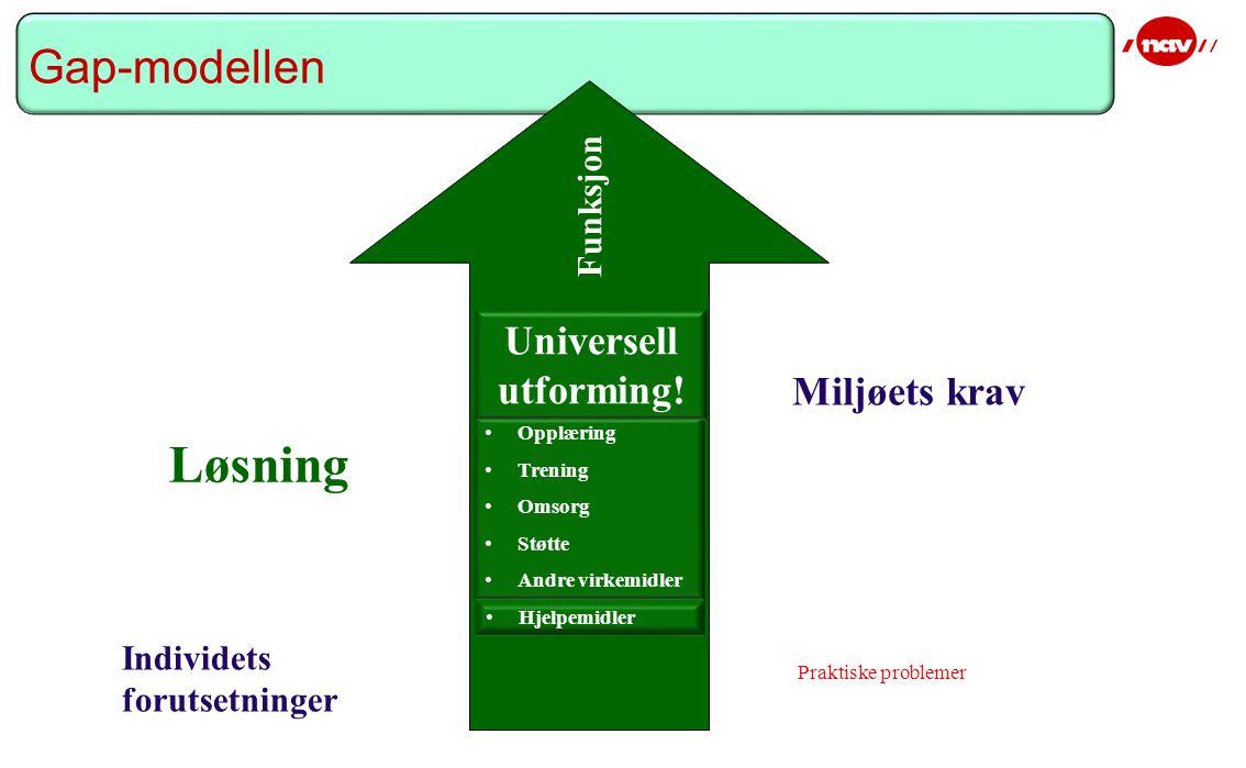 Miljøets krav Løsning Individets forutsetninger Funksjon Hjelpemidler Opplæring Trening Omsorg Støtte Andre virkemidler Universell utforming.