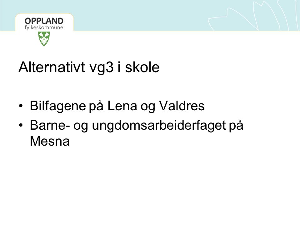 Alternativt vg3 i skole Bilfagene på Lena og Valdres Barne- og ungdomsarbeiderfaget på Mesna