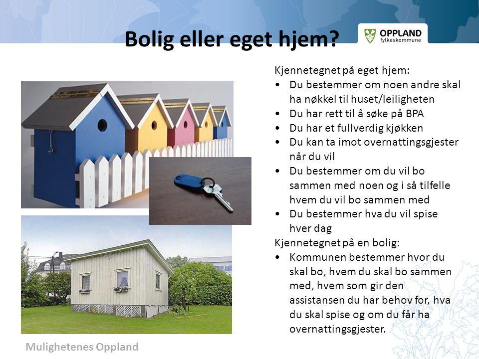 Mulighetenes Oppland Bolig eller eget hjem.