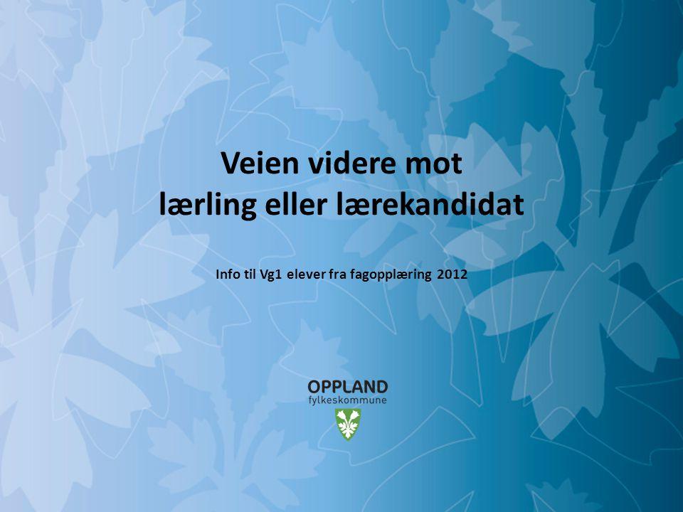 Mulighetenes Oppland Veien videre mot lærling eller lærekandidat Info til Vg1 elever fra fagopplæring 2012