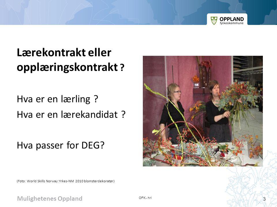 Mulighetenes Oppland Prosjekt til fordypning – ofte «nøkkel» til læreplass Prosjekt til fordypning- samspillet skole-bedrift Prosjekt til fordypning- samspillet skole-bedrift (Foto: World Skills Norway: Yrkes- NM 2010 skogfag) OFK - hrl