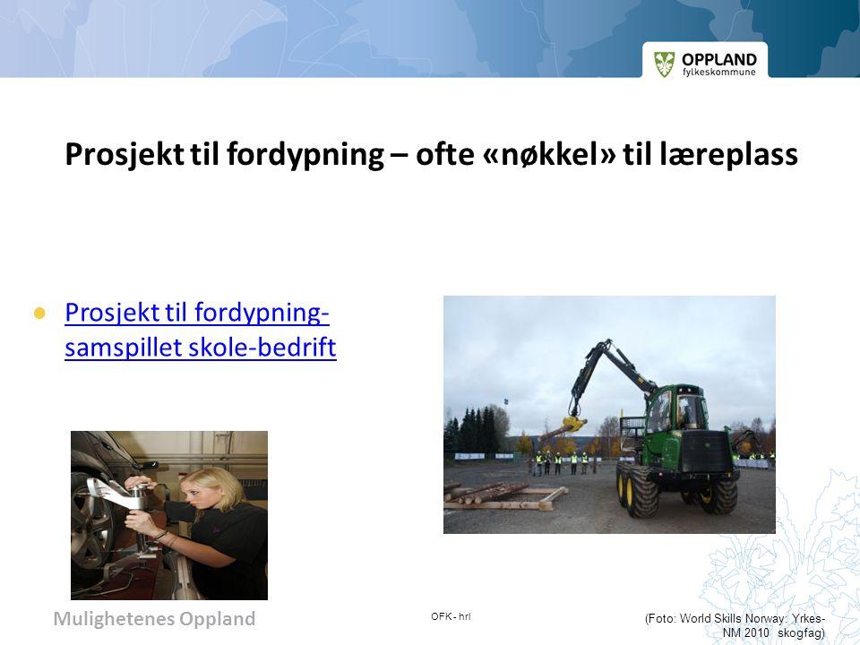 Mulighetenes Oppland KONTAKTINFO Oppland fylkeskommune: www.oppland.nowww.oppland.no Oppland fylkeskommune – fagopplæring: Tlf.