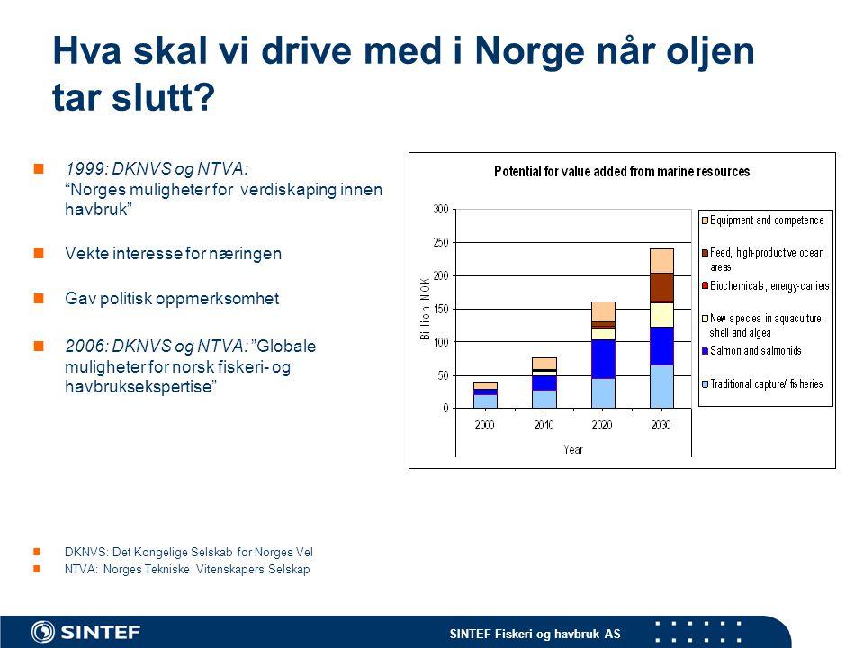 SINTEF Fiskeri og havbruk AS Takk for oppmerksomheten ! Foto: Jon Arne Grøttum