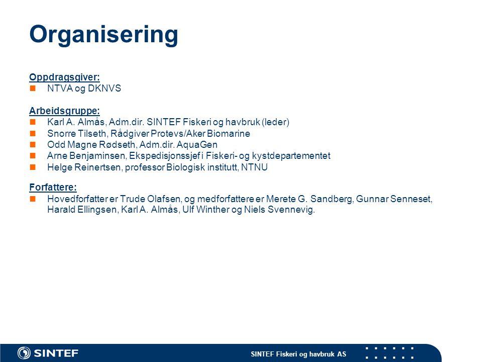 SINTEF Fiskeri og havbruk AS Organisering Oppdragsgiver: NTVA og DKNVS Arbeidsgruppe: Karl A.