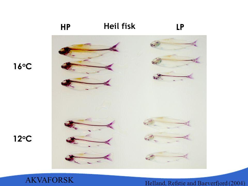 16 o C LPHP AKVAFORSK Heil fisk Helland, Refstie and Baeverfjord (2004) 12 o C