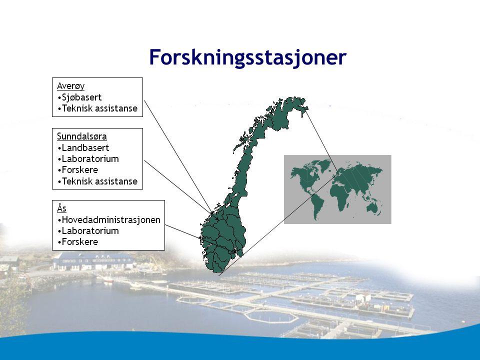 Forskningsstasjoner Sunndalsøra Landbasert Laboratorium Forskere Teknisk assistanse Ås Hovedadministrasjonen Laboratorium Forskere Averøy Sjøbasert Te