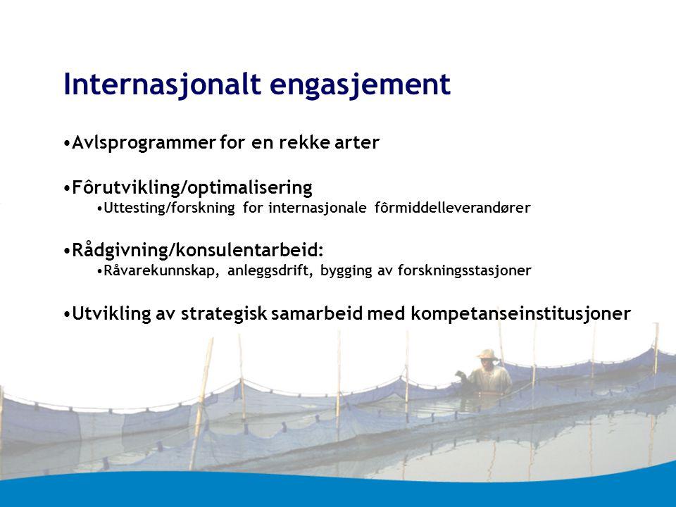 Internasjonalt engasjement Avlsprogrammer for en rekke arter Fôrutvikling/optimalisering Uttesting/forskning for internasjonale fôrmiddelleverandører