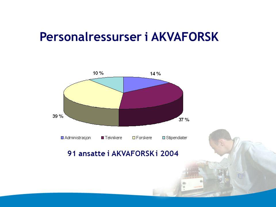Personalressurser i AKVAFORSK 91 ansatte i AKVAFORSK i 2004