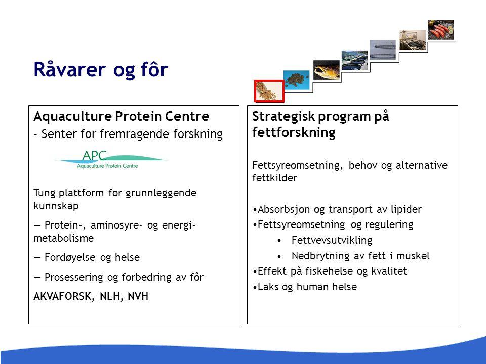 Råvarer og fôr Aquaculture Protein Centre - Senter for fremragende forskning Tung plattform for grunnleggende kunnskap — Protein-, aminosyre- og energ
