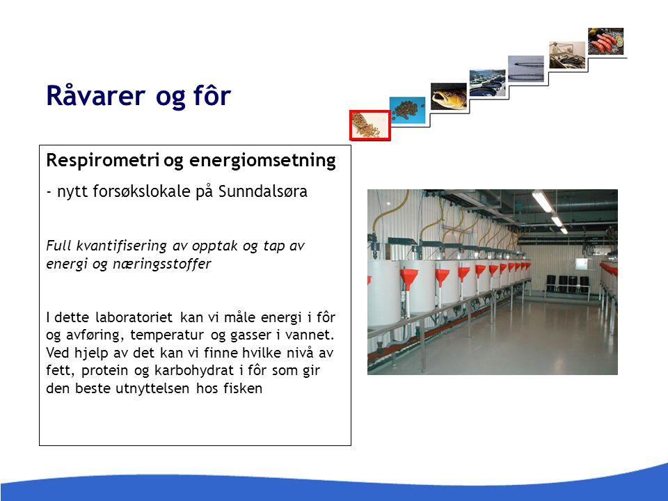 Råvarer og fôr Respirometri og energiomsetning - nytt forsøkslokale på Sunndalsøra Full kvantifisering av opptak og tap av energi og næringsstoffer I