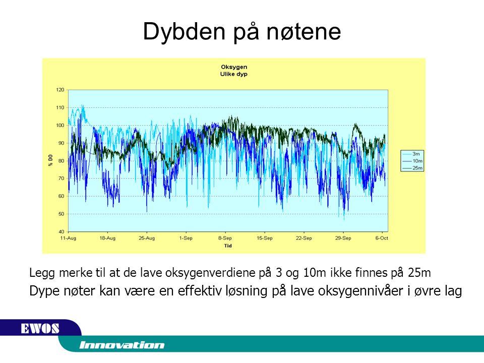 Dybden på nøtene Legg merke til at de lave oksygenverdiene på 3 og 10m ikke finnes på 25m Dype nøter kan være en effektiv løsning på lave oksygennivåer i øvre lag