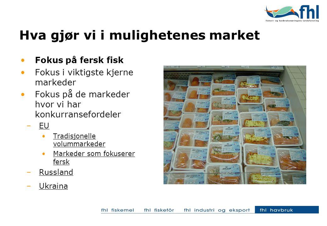 Hva gjør vi i mulighetenes market Fokus på fersk fisk Fokus i viktigste kjerne markeder Fokus på de markeder hvor vi har konkurransefordeler –EU Tradisjonelle volummarkeder Markeder som fokuserer fersk –Russland –Ukraina