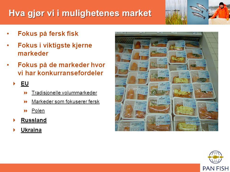 Hva gjør vi i mulighetenes market Fokus på fersk fisk Fokus i viktigste kjerne markeder Fokus på de markeder hvor vi har konkurransefordeler  EU  Tradisjonelle volummarkeder  Markeder som fokuserer fersk  Polen  Russland  Ukraina