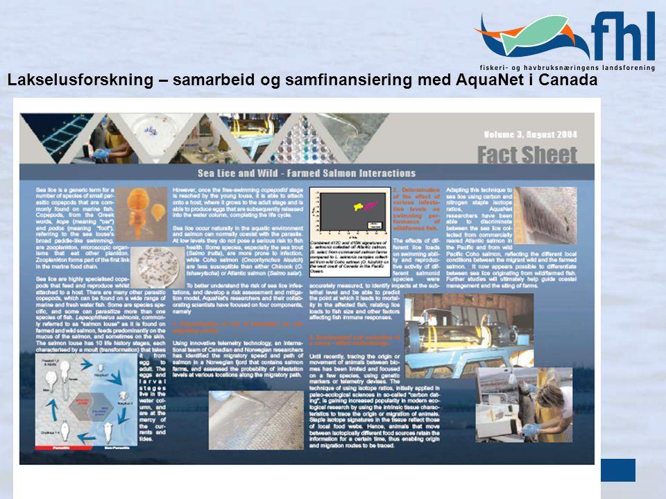 Lakselusforskning – samarbeid og samfinansiering med AquaNet i Canada