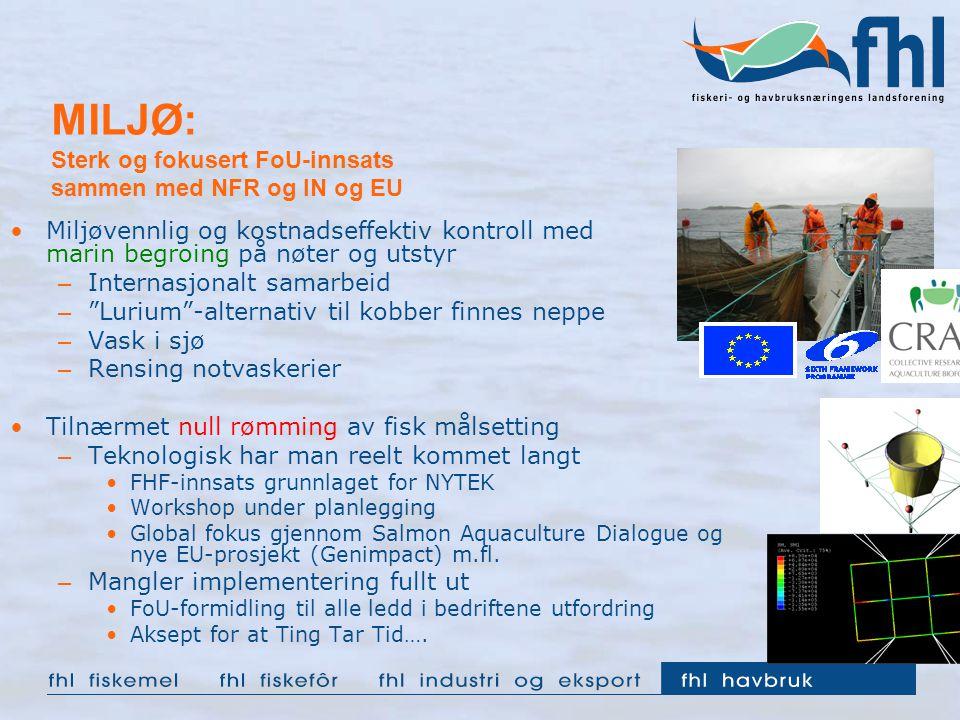 MILJØ: Sterk og fokusert FoU-innsats sammen med NFR og IN og EU Miljøvennlig og kostnadseffektiv kontroll med marin begroing på nøter og utstyr – Internasjonalt samarbeid – Lurium -alternativ til kobber finnes neppe – Vask i sjø – Rensing notvaskerier Tilnærmet null rømming av fisk målsetting – Teknologisk har man reelt kommet langt FHF-innsats grunnlaget for NYTEK Workshop under planlegging Global fokus gjennom Salmon Aquaculture Dialogue og nye EU-prosjekt (Genimpact) m.fl.