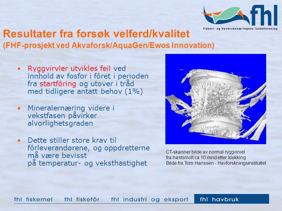 Resultater fra forsøk velferd/kvalitet (FHF-prosjekt ved Akvaforsk/AquaGen/Ewos Innovation) Ryggvirvler utvikles feil ved innhold av fosfor i fôret i perioden fra startfôring og utover i tråd med tidligere antatt behov (1%) Mineralernæring videre i vekstfasen påvirker alvorlighetsgraden Dette stiller store krav til fôrleverandørene, og oppdretterne må være bevisst på temperatur- og veksthastighet CT-skanner bilde av normal ryggvirvel fra høstsmolt ca 10 mnd etter klekking Bilde fra Tom Hanssen - Havforskningsinstituttet