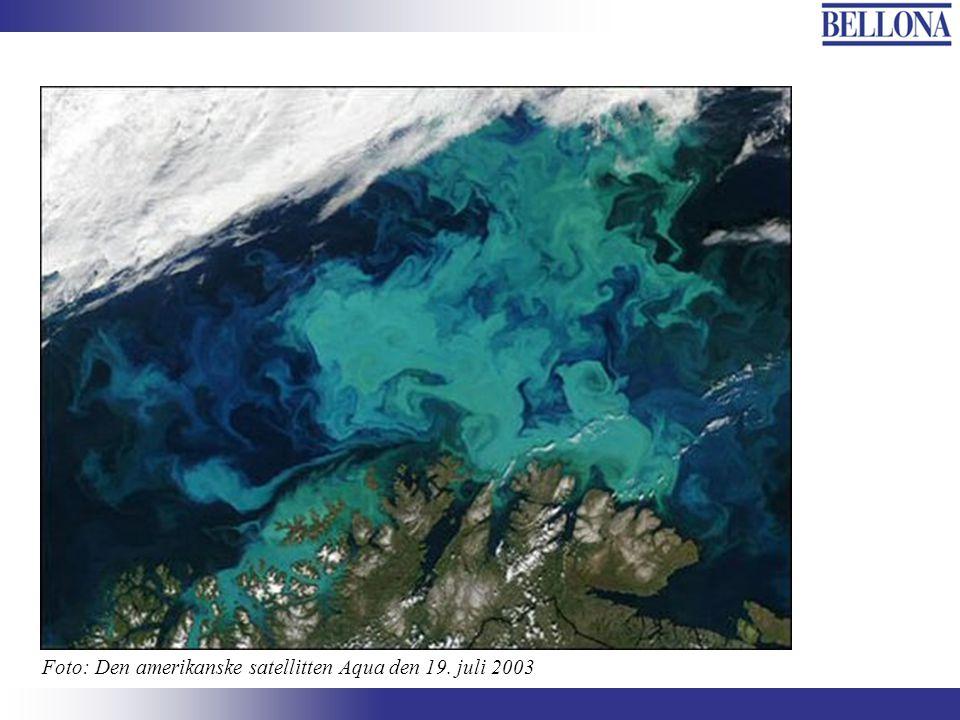 Foto: Den amerikanske satellitten Aqua den 19. juli 2003