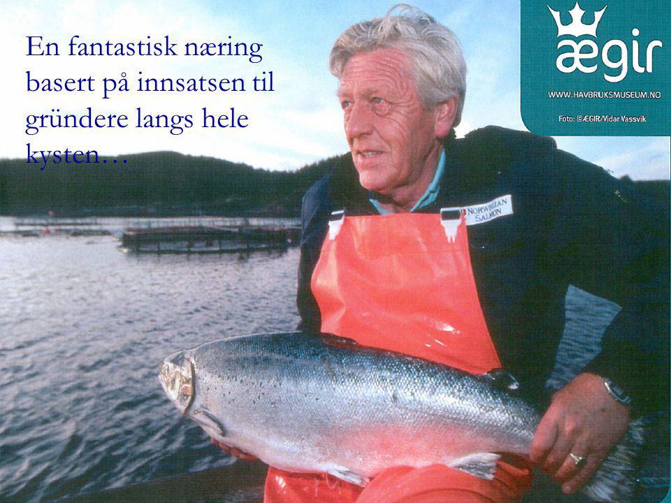 Tiltak mot rømming - Beredskap Alle selskap kartlegger risiko og utarbeider beredskapsplaner  rutiner, personell og utstyr Stor vekt på tilstrekkelig brønnbåt- og mottakskapasitet for nødslakting av fisk og mottak av død fisk.