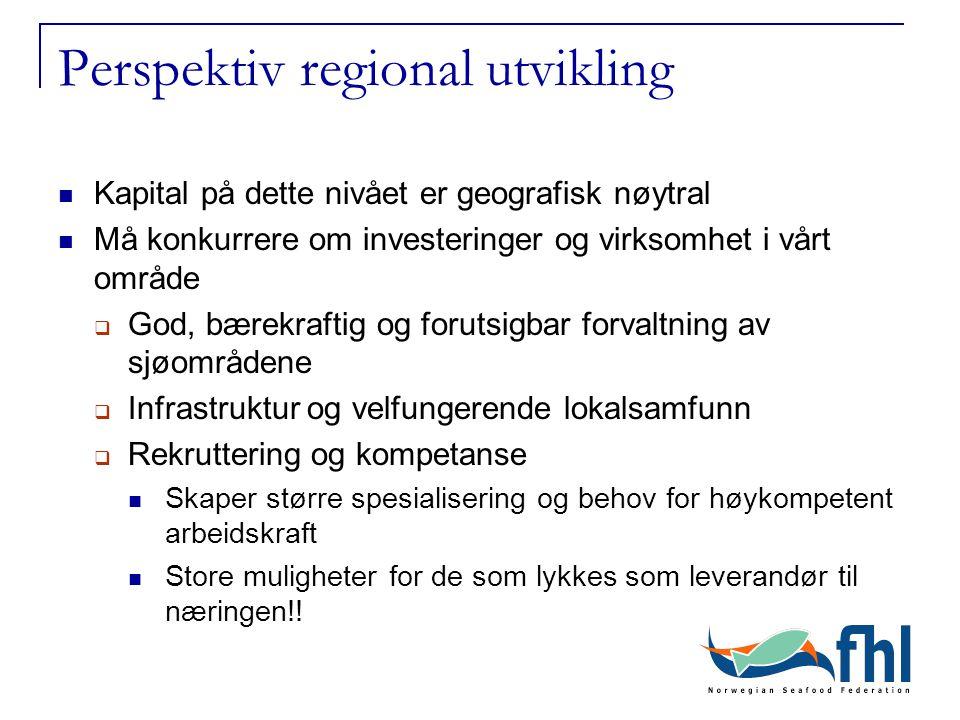 Perspektiv regional utvikling Kapital på dette nivået er geografisk nøytral Må konkurrere om investeringer og virksomhet i vårt område  God, bærekraf