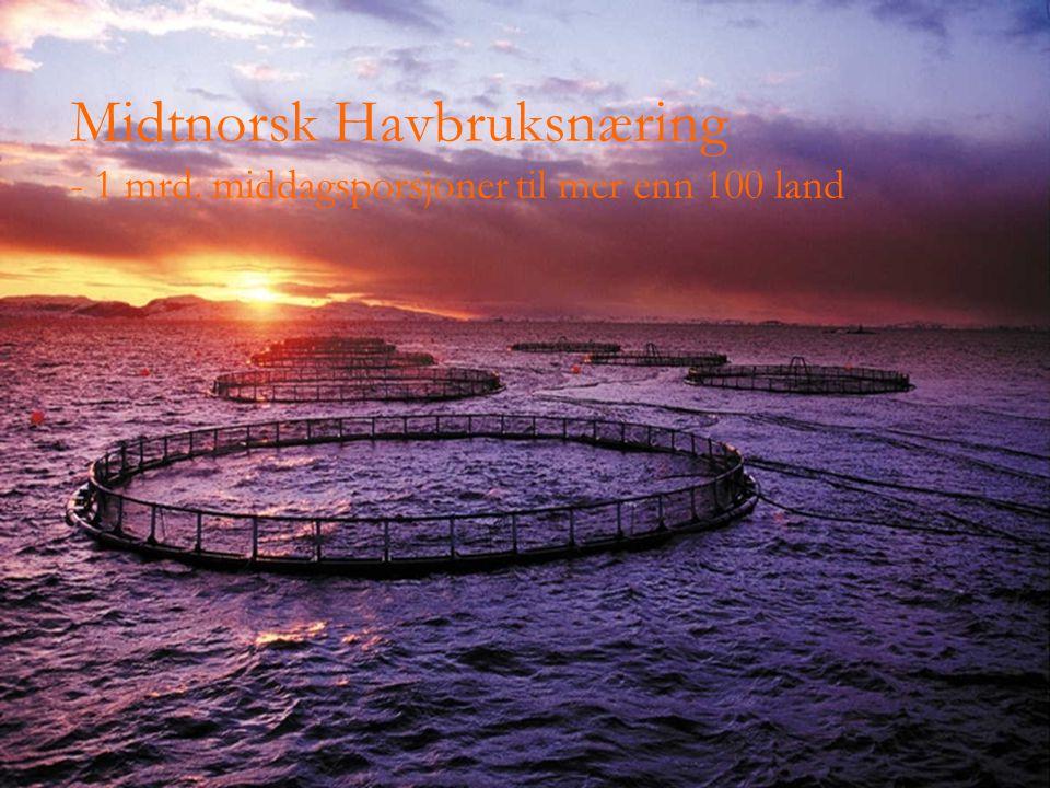 Midtnorsk Havbruksnæring - 1 mrd. middagsporsjoner til mer enn 100 land