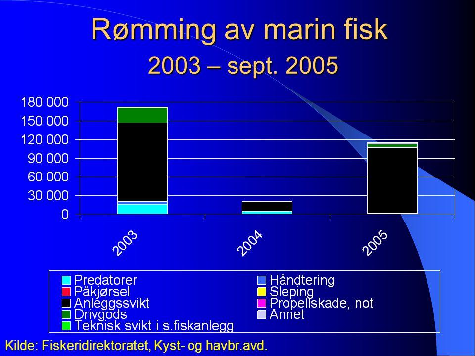 Rømming av marin fisk 2003 – sept. 2005 Kilde: Fiskeridirektoratet, Kyst- og havbr.avd.
