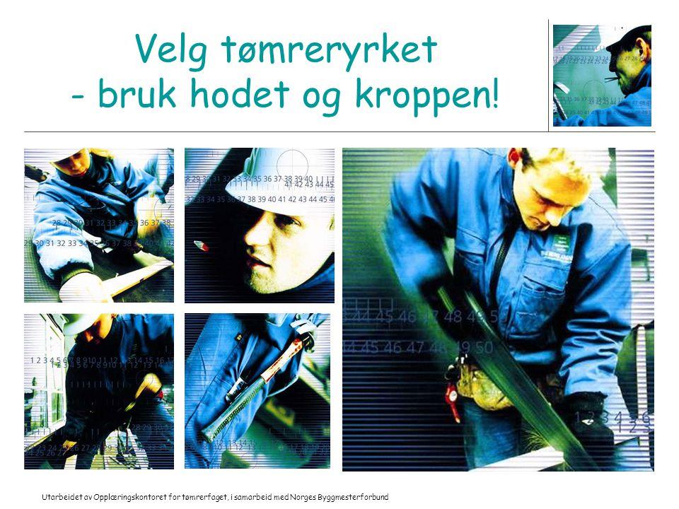 Utarbeidet av Opplæringskontoret for tømrerfaget, i samarbeid med Norges Byggmesterforbund Velg tømreryrket - bruk hodet og kroppen!