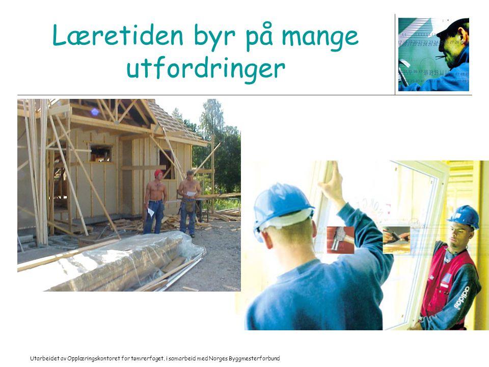 Utarbeidet av Opplæringskontoret for tømrerfaget, i samarbeid med Norges Byggmesterforbund Læretiden byr på mange utfordringer