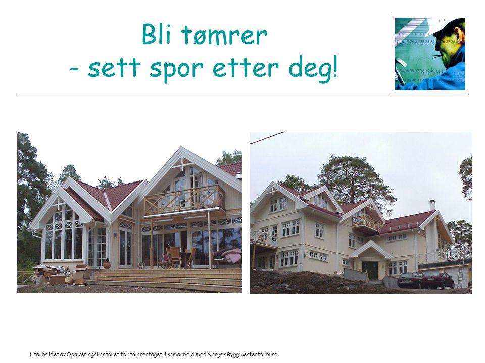 Utarbeidet av Opplæringskontoret for tømrerfaget, i samarbeid med Norges Byggmesterforbund Bli tømrer - sett spor etter deg!
