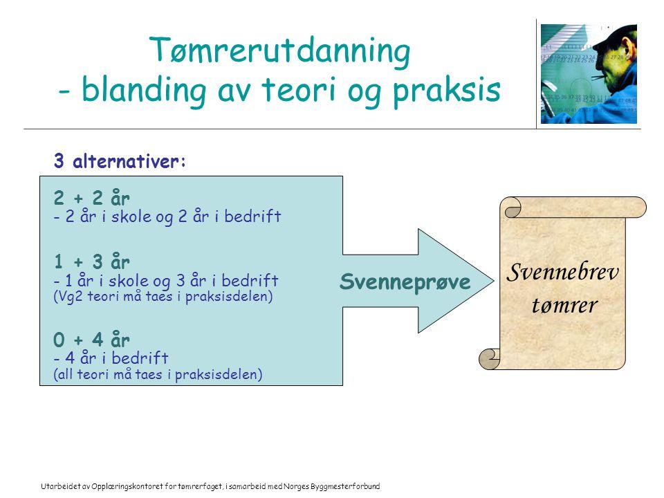 Utarbeidet av Opplæringskontoret for tømrerfaget, i samarbeid med Norges Byggmesterforbund Tømrerutdanning - blanding av teori og praksis 3 alternativ