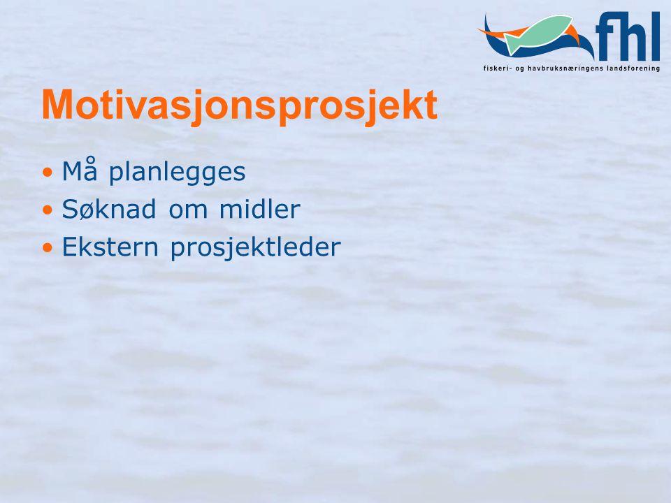 Motivasjonsprosjekt Må planlegges Søknad om midler Ekstern prosjektleder