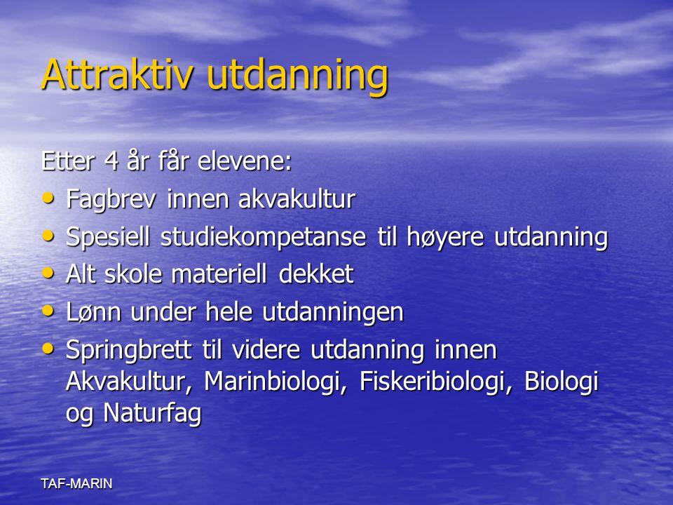 TAF-MARIN Attraktiv utdanning Etter 4 år får elevene: Fagbrev innen akvakultur Fagbrev innen akvakultur Spesiell studiekompetanse til høyere utdanning