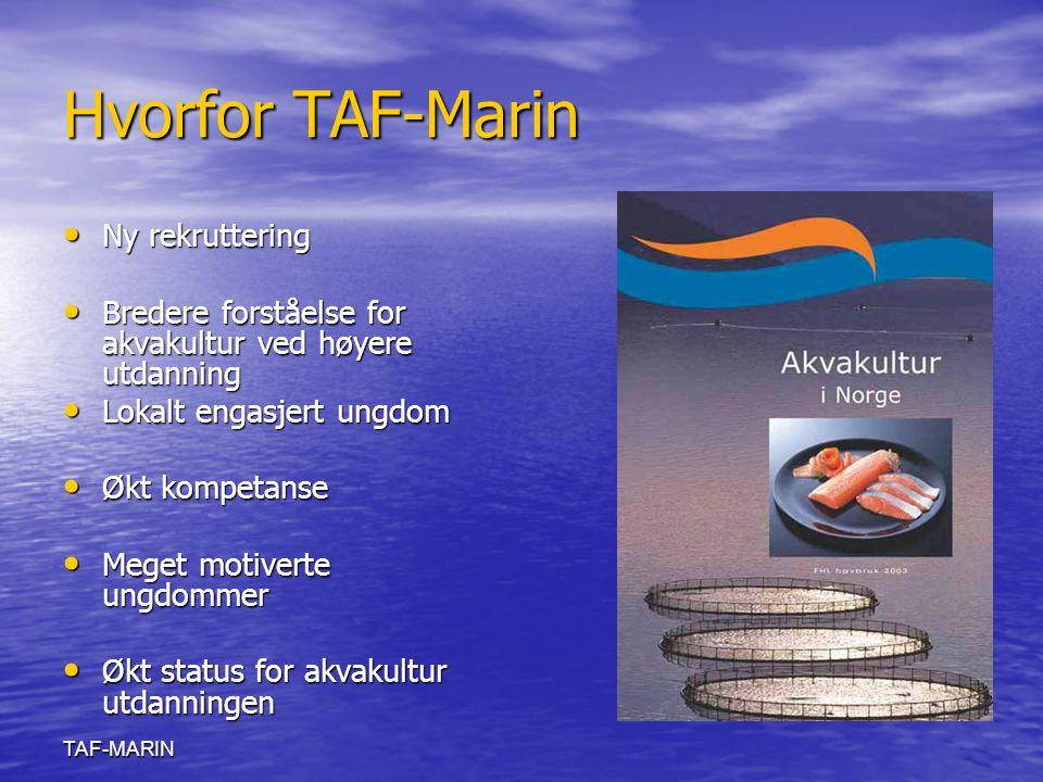 TAF-MARIN Hvorfor TAF-Marin Ny rekruttering Ny rekruttering Bredere forståelse for akvakultur ved høyere utdanning Bredere forståelse for akvakultur v