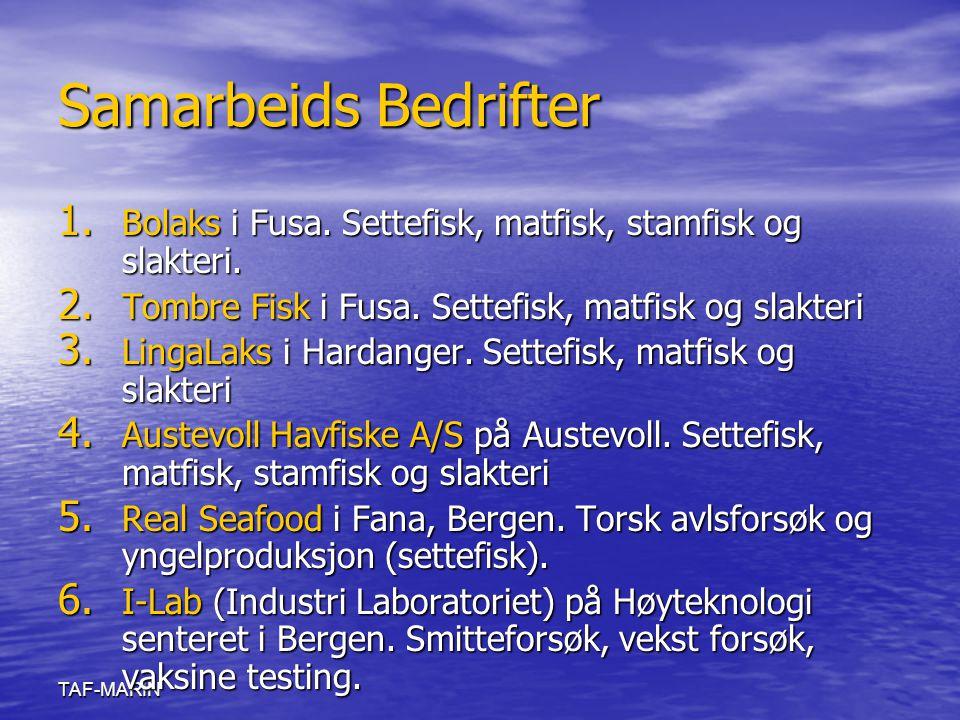 TAF-MARIN Samarbeids Bedrifter 1. Bolaks i Fusa. Settefisk, matfisk, stamfisk og slakteri. 2. Tombre Fisk i Fusa. Settefisk, matfisk og slakteri 3. Li