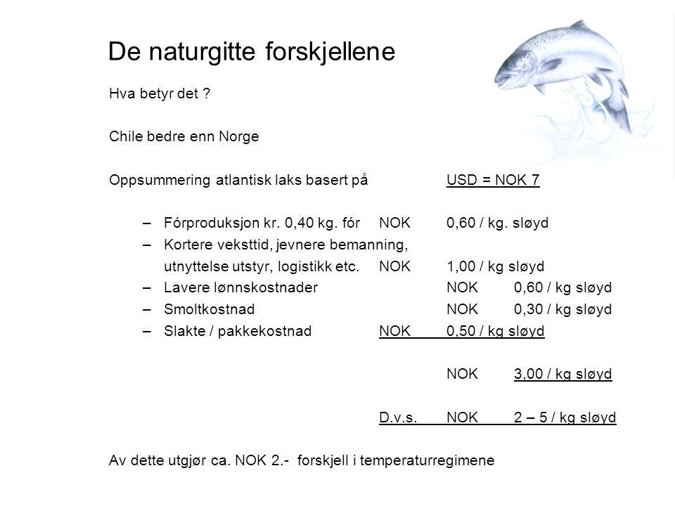De naturgitte forskjellene Hva betyr det ? Chile bedre enn Norge Oppsummering atlantisk laks basert på USD = NOK 7 –Fórproduksjon kr. 0,40 kg. fórNOK0