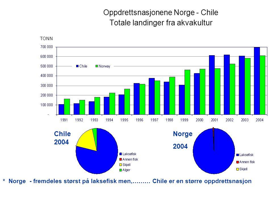 Oppdrettsnasjonene Norge - Chile Totale landinger fra akvakultur Chile 2004 Norge 2004 * Norge - fremdeles størst på laksefisk men,……… Chile er en større oppdrettsnasjon TONN