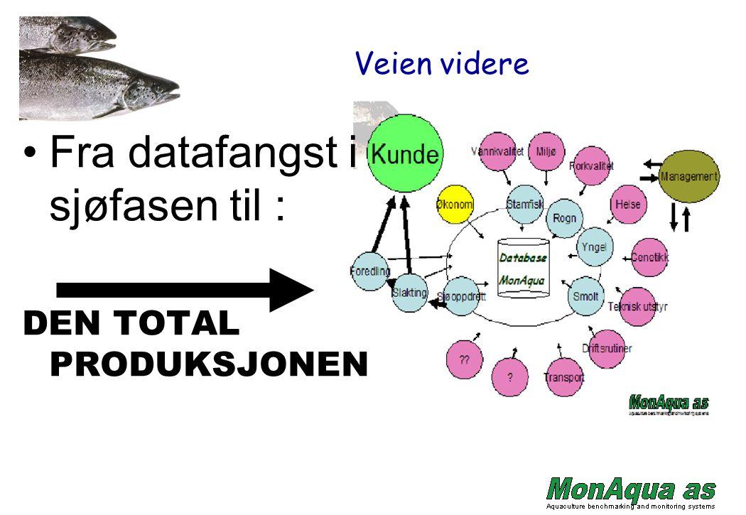 Veien videre Fra datafangst i sjøfasen til : DEN TOTAL PRODUKSJONEN