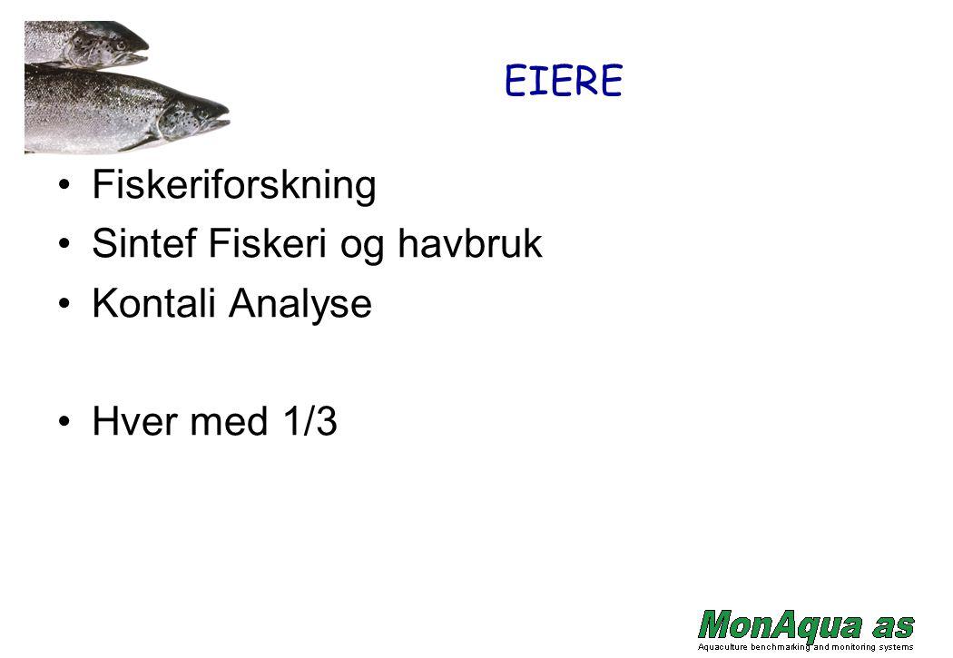 EIERE Fiskeriforskning Sintef Fiskeri og havbruk Kontali Analyse Hver med 1/3