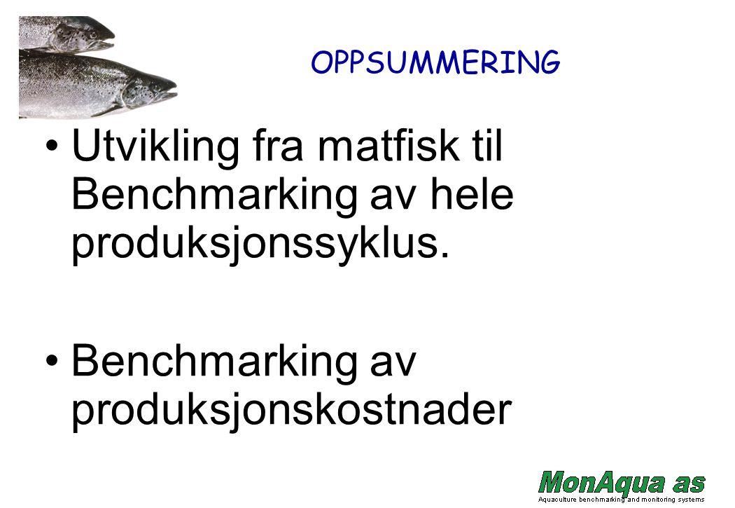 OPPSUMMERING Utvikling fra matfisk til Benchmarking av hele produksjonssyklus. Benchmarking av produksjonskostnader