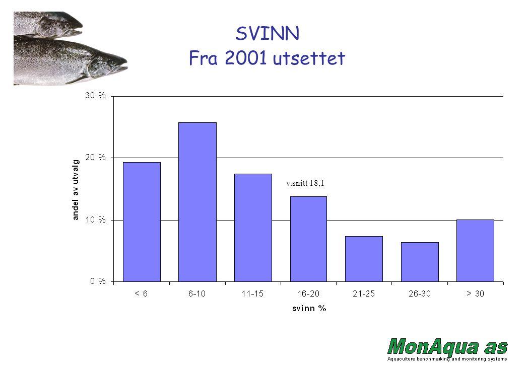 Årsrapport Egen årsrapport pr selskap.