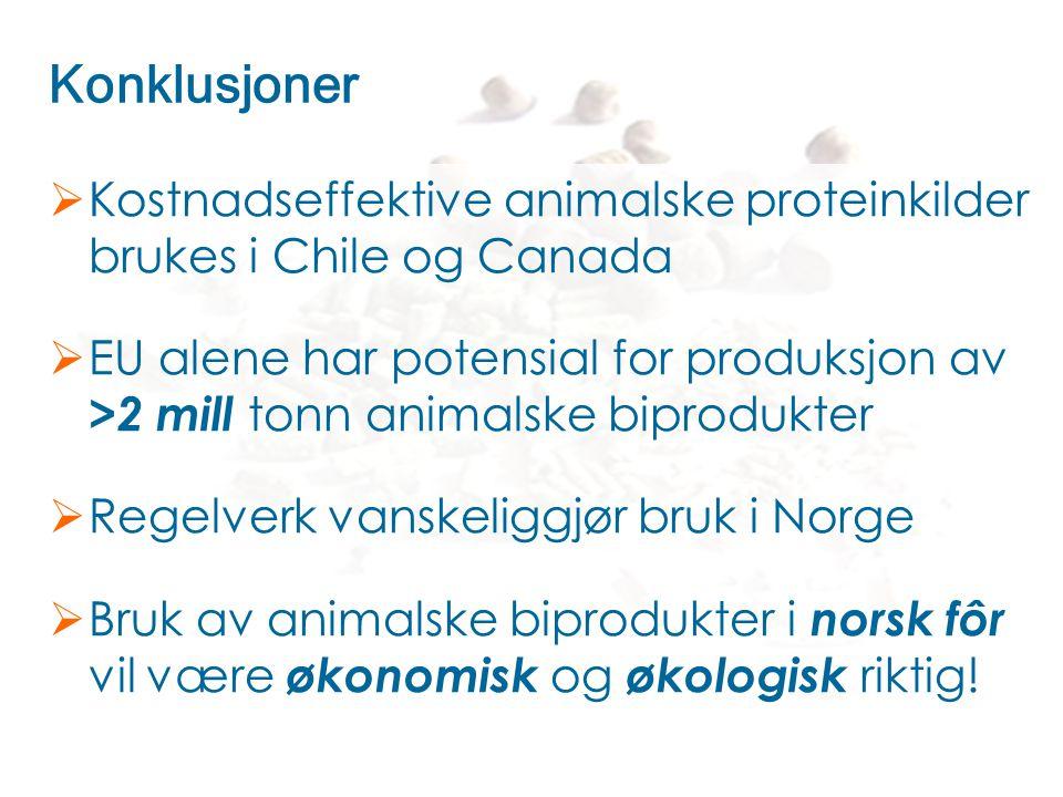 Konklusjoner  Kostnadseffektive animalske proteinkilder brukes i Chile og Canada  EU alene har potensial for produksjon av >2 mill tonn animalske bi
