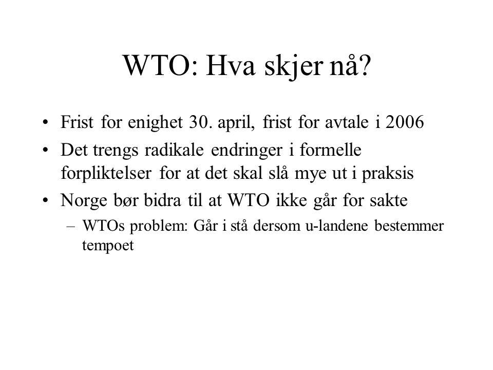 WTO: Hva skjer nå? Frist for enighet 30. april, frist for avtale i 2006 Det trengs radikale endringer i formelle forpliktelser for at det skal slå mye