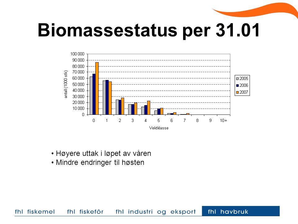 Biomassestatus per 31.01 Høyere uttak i løpet av våren Mindre endringer til høsten