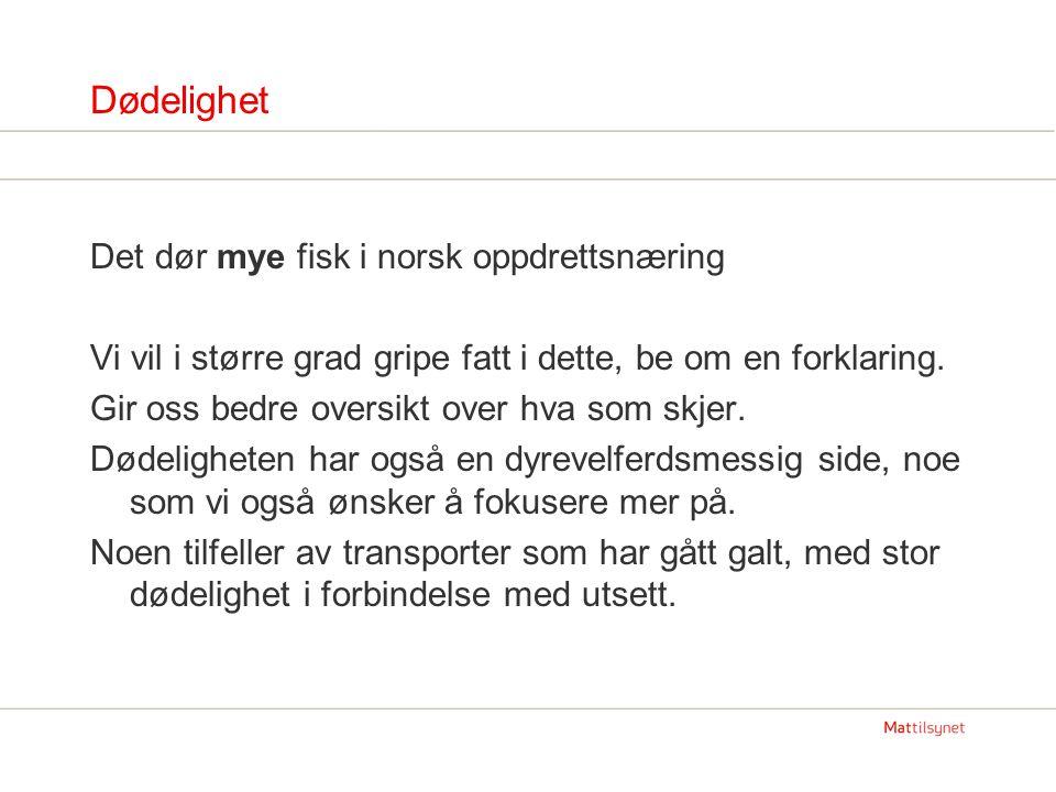 Dødelighet Det dør mye fisk i norsk oppdrettsnæring Vi vil i større grad gripe fatt i dette, be om en forklaring. Gir oss bedre oversikt over hva som